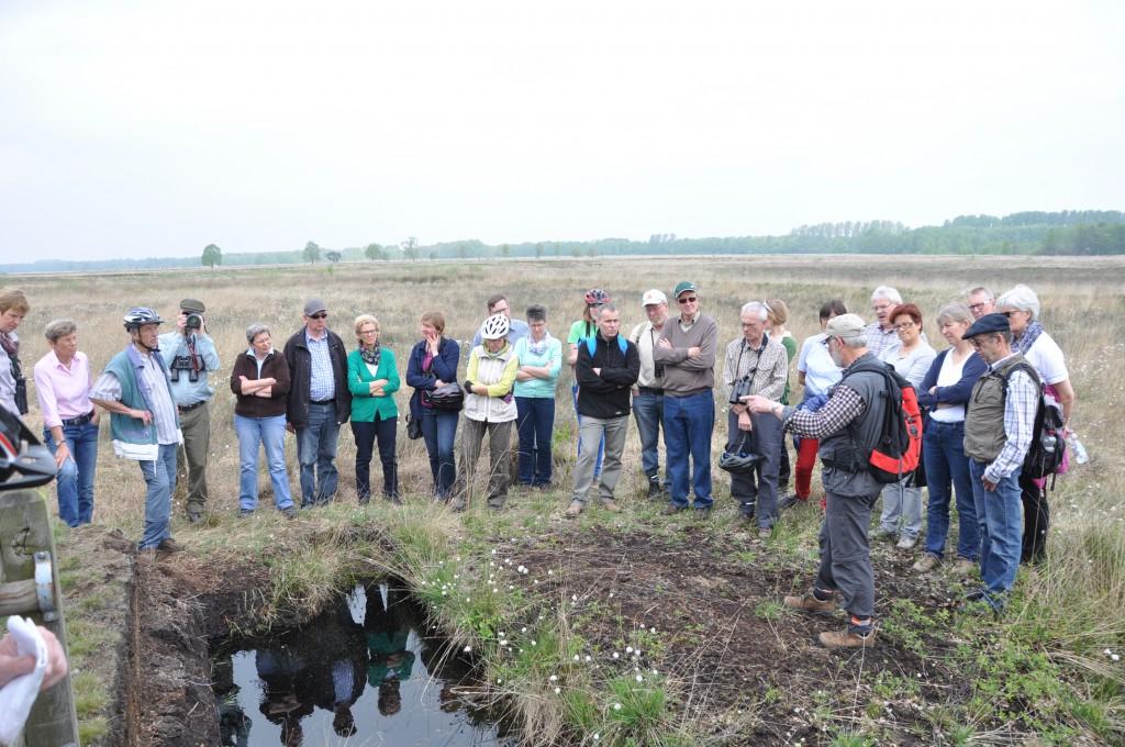 Herr Sack vom NABU Minden-Lübbecke zeigt den Teilnehmern einen Schautorfstich im Großen Torfmoor.